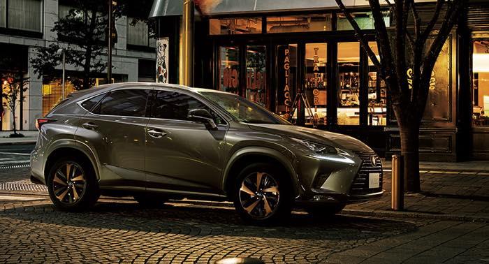 NX300 Bronze Edition